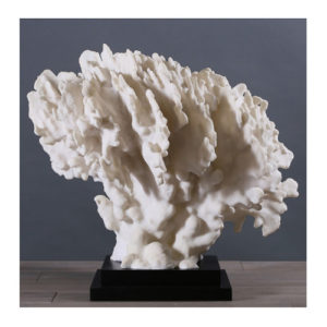 blue-ridge-coral-white